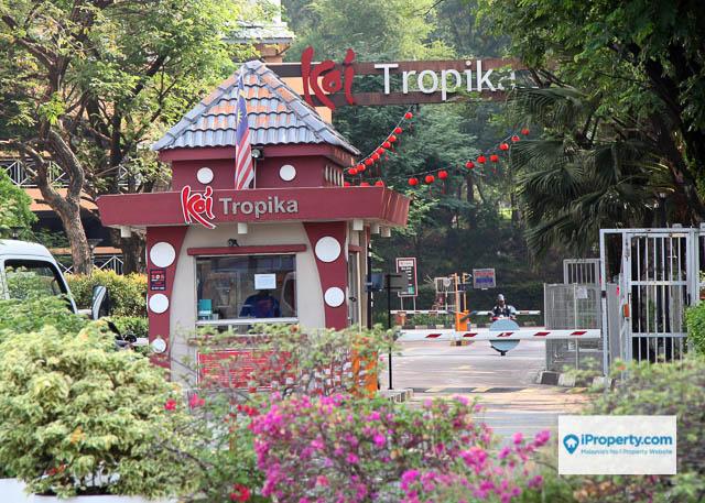 Koi Tropika - Photo 2