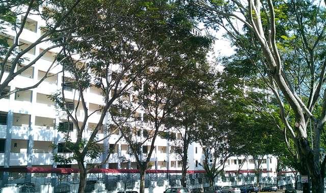 Vistaria Condominium - Photo 12