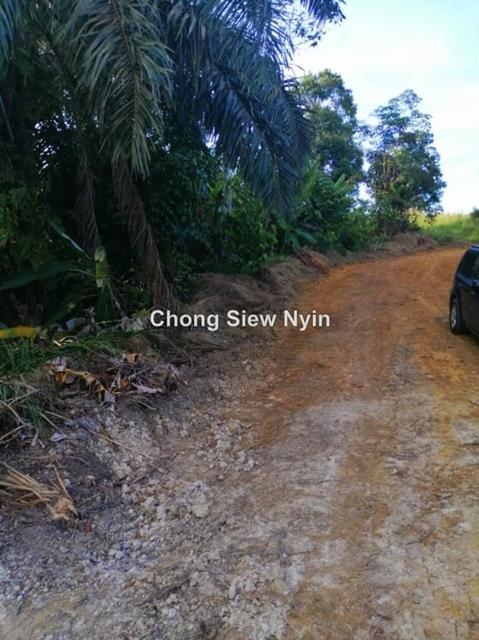Freehold palm land, Kelapa Sawit, Kulai
