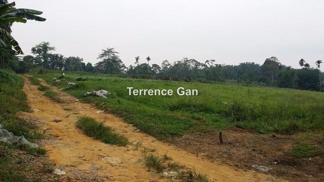 DESA CEMERLANG LAND, JOHOR BAHRU , Johor Bahru