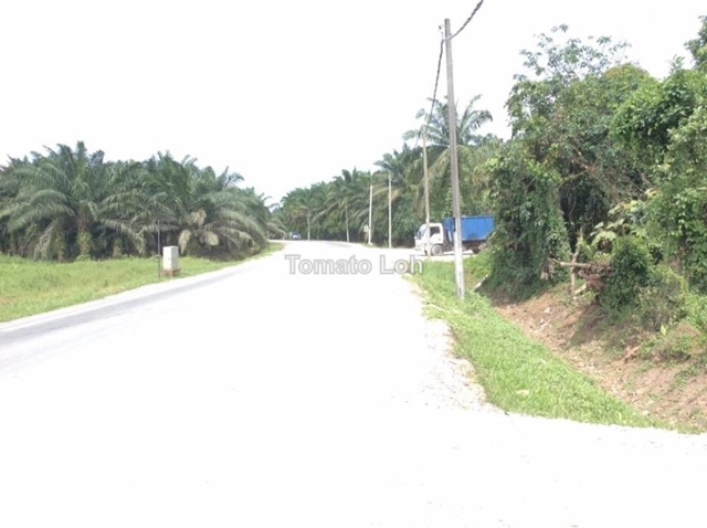 Tanjung Kupang industrial Zone Land, Gelang Patah