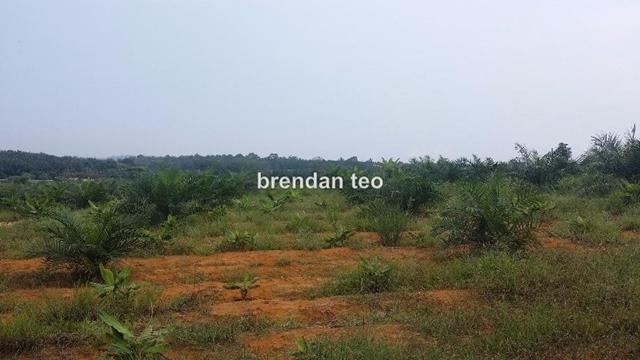 JOHOR Sungai tiram 14 acres industrial land, ulu tiram, Johor Bahru