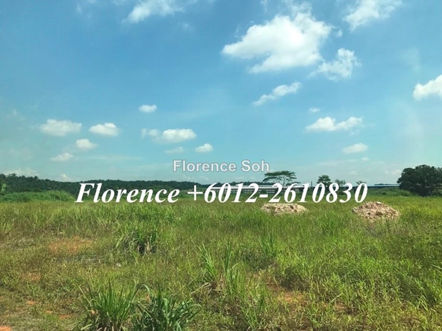 Seelong Land For Sale, Seelong, Senai