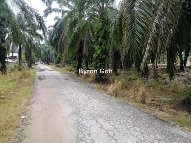 Ijok & Bistari Jaya, Sungai Buloh