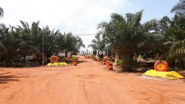 Kahang, Oil Palm Land, Kahang